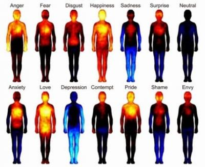 body_mapping
