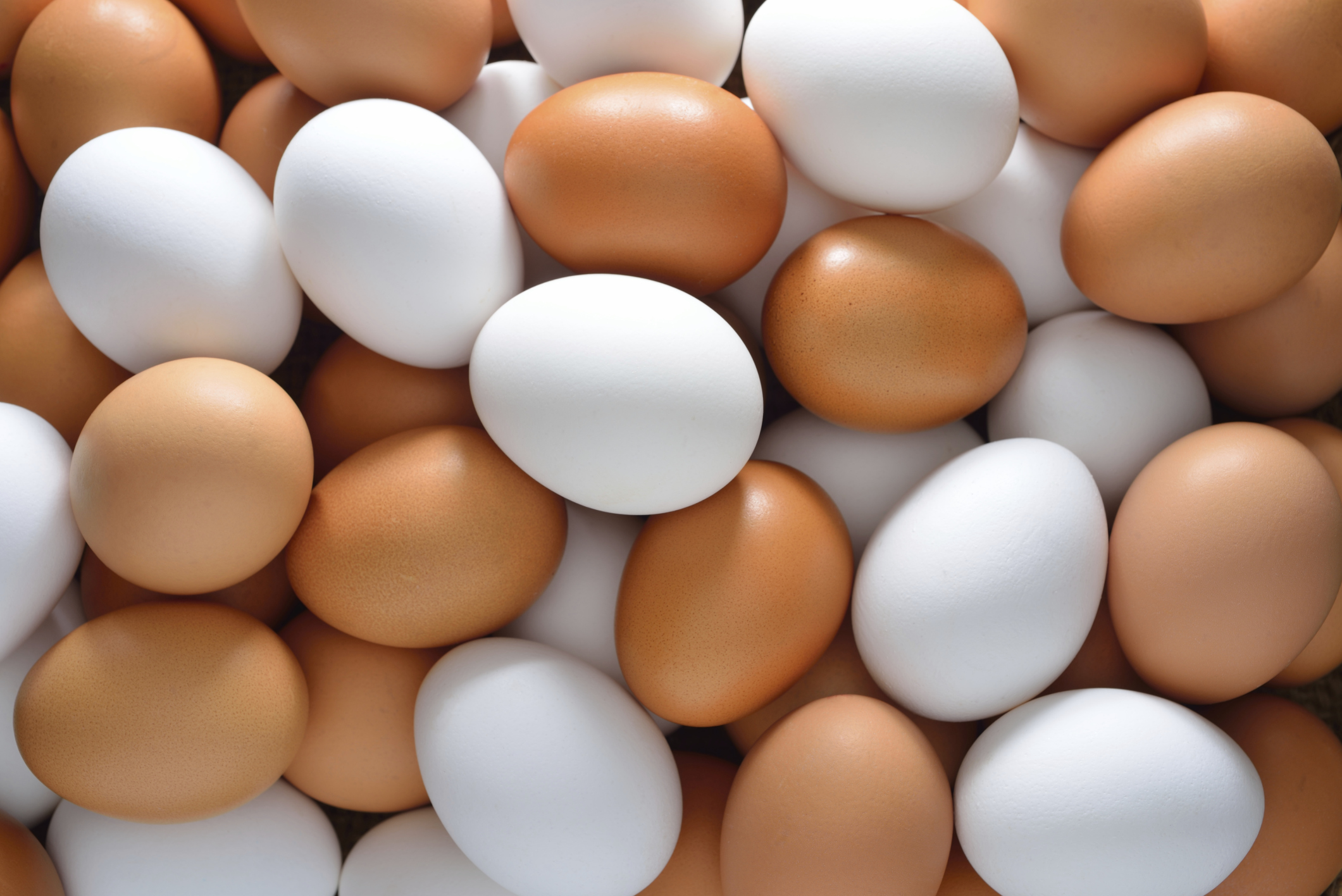 Do Eggs Increase Your Risk of Developing Heart Disease?