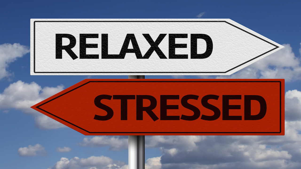 Are You Calm or Highly Responsive? Discover How to Increase Your Longevity