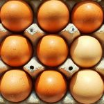 Cholesterol and Eggs Do Not Increase Stroke Risk